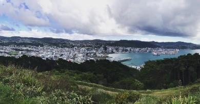 ATTMA New Zealand